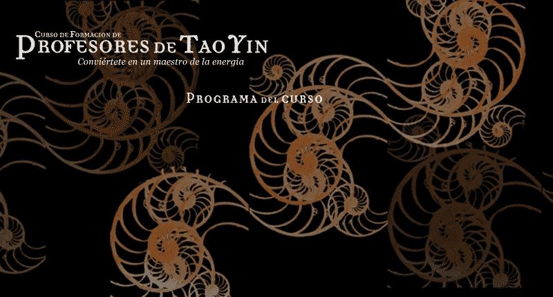 formacion-profesoras-tao-yin