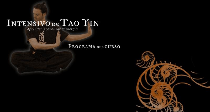 intensivo-de-tao-yin
